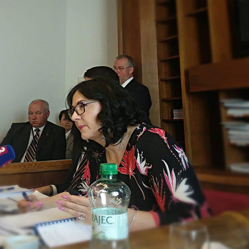 Ministerka Martina Lubyová na parlamentnom školskom výbore | Zdroj: FB poslankyne Zuzany Zimenovej
